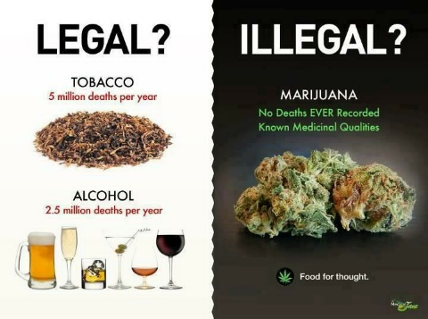 Legale?!!Illegale?!